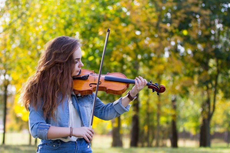 Jak vybrat housle