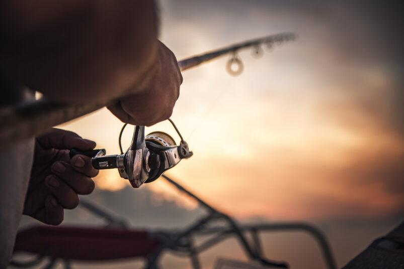 vyberomat cz fishing rod